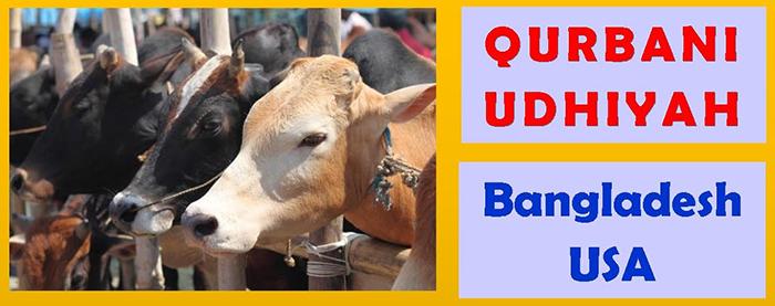 Udhiya